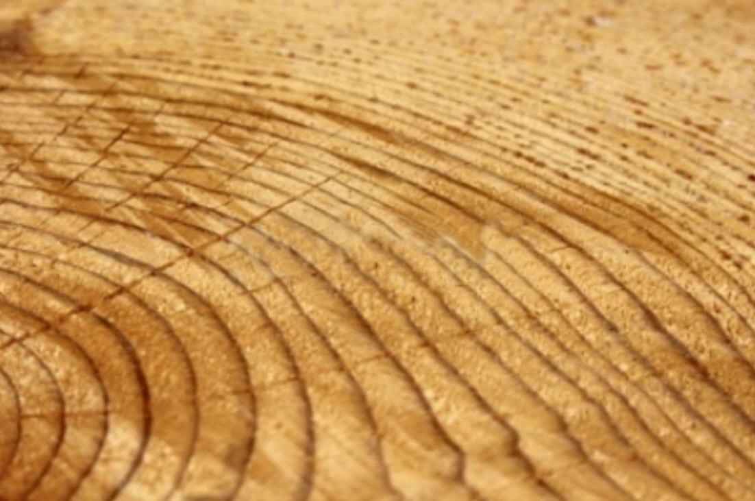 Holz ist ein natürlicher Werkstoff